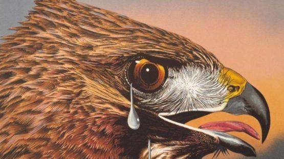 Michael Knigin - Special Bird II, 1978 (detail)