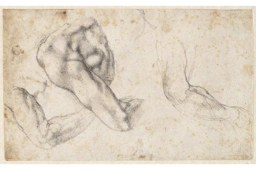 Michelangelo Buonarroti - Three studies of a left arm and shoulder