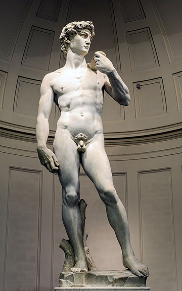 Michelangelo - David, 1501–1504