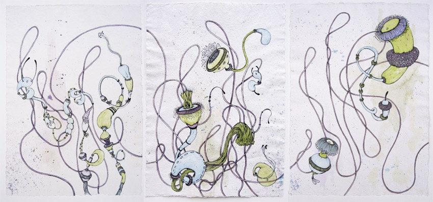 Microbo - Florae Batterica, 2013