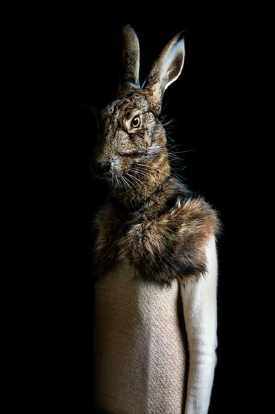 Miguel Vallinas Prieto, Rabbit, 2013, courtesy of My Life In Art