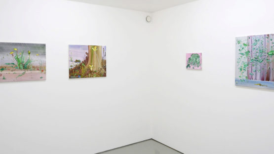 Mimei Thompson - Lunar Asparagus, 2013, show at Art First Projects, installation view #2, photo credits - Art First