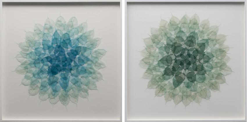 Miya Ando - Cerulean Leaf Mandala, 2015 (Left) / Forest Green Meditation Leaf Mandala, 2015 (Right) - english aluminum gallery