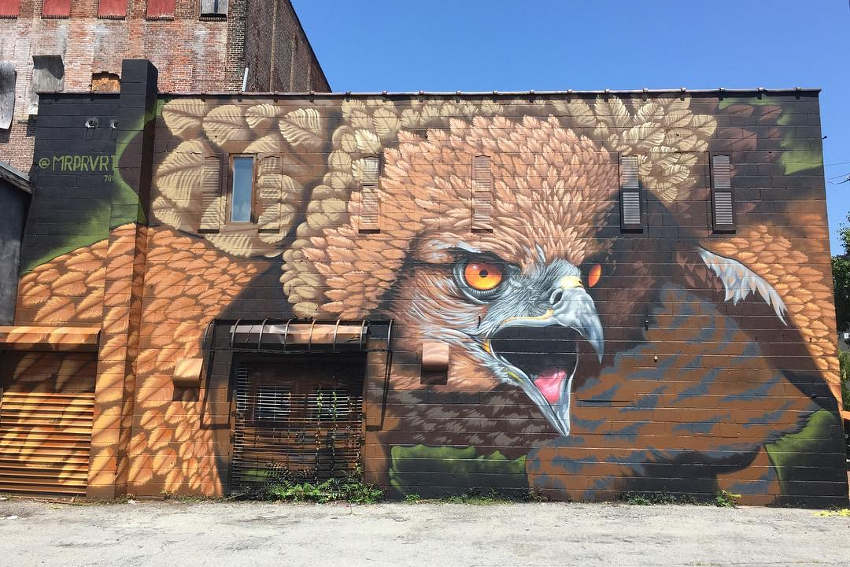 mr prvrt mural in poughkeepsie ny