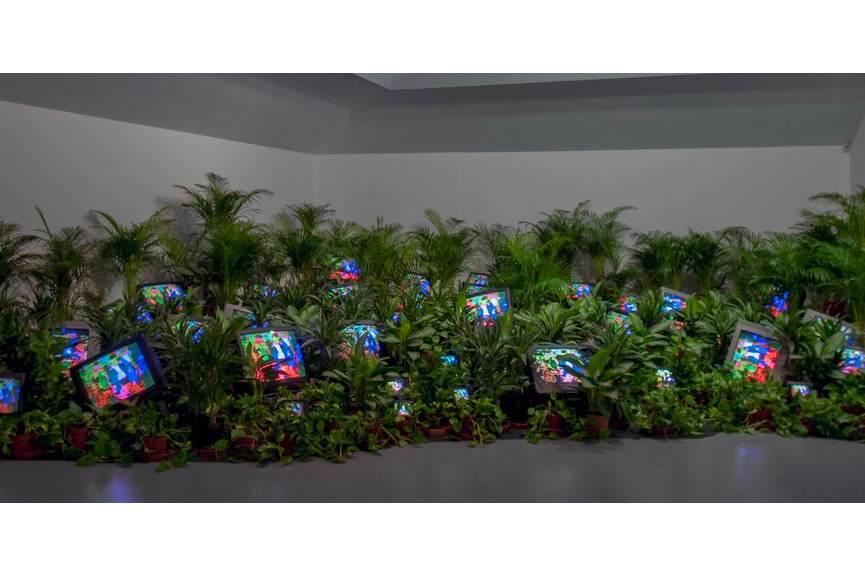 Nam June Paik - TV Garden