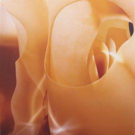 Naomi Ben-Shahar-Amber Latex A1-2001