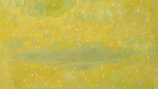 Natale Addamiano - Grande cielo stellato, 2012 (detail)