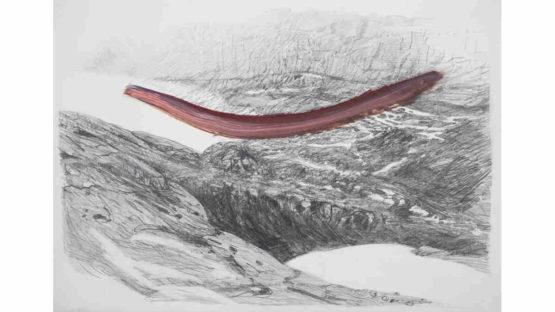 Natalia Castaneda Arbelaez - Ancient Glaciation Mark