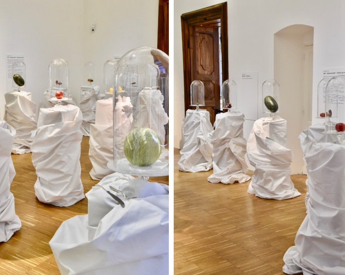 Natalie Port - The Pollinators Buffet, 2018 - installation view at Universalmuseum Joanneum Graz