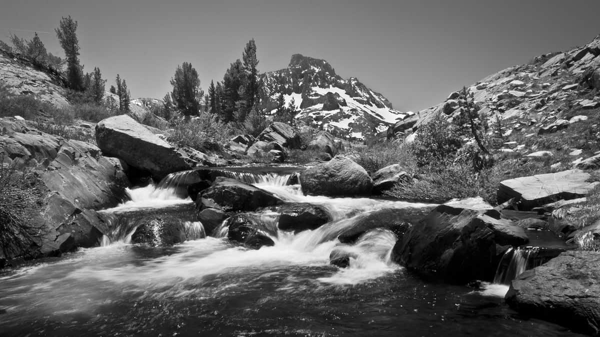 Ansel Adams - Wilderness
