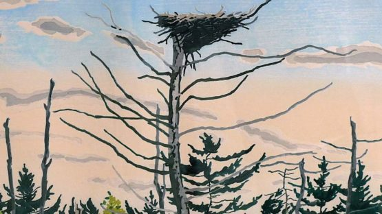 Neil Welliver - Osprey's Nest, 1979 (detail)