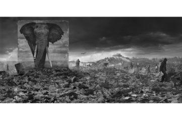 Nick Brandt exhibition nick brandt photography