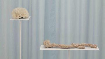 Nona Inescu - Brittle bones I, 2018