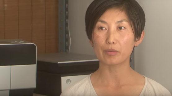 Noriko Furunishi, artist, photo credits - youtube