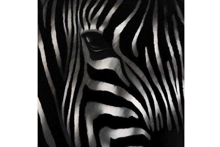 Norma Bessieres - Zebra Seducteur, 2016