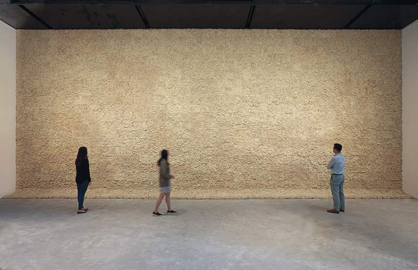Olafur Eliasson - Moss wall