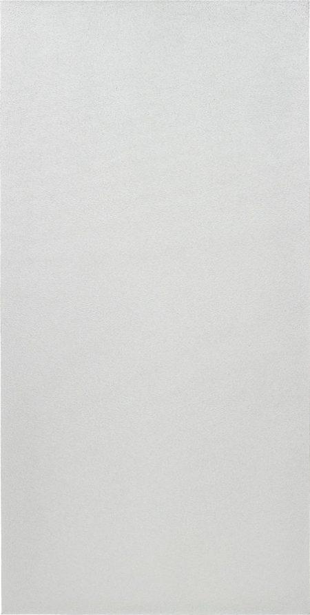 Olivier Mosset-Untitled (silver)-2009
