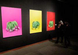 One of the previous exhibitions at TMoCA - Image via Aleksanderwillemse com