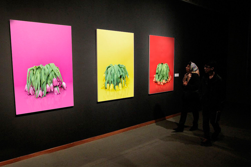 One of the previous exhibitions at TMoCA - Image via Aleksanderwillemse com