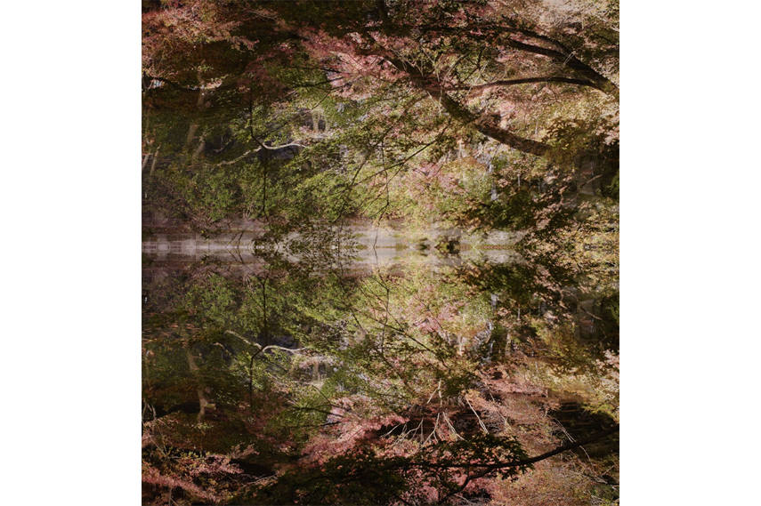 Ori Gersht - Floating World, Lost World 01, 2016 - Copyright Ori Gersht - Courtesy of Ben Brown Fine Arts