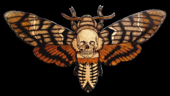 P. Winkel - Death Skull Moth