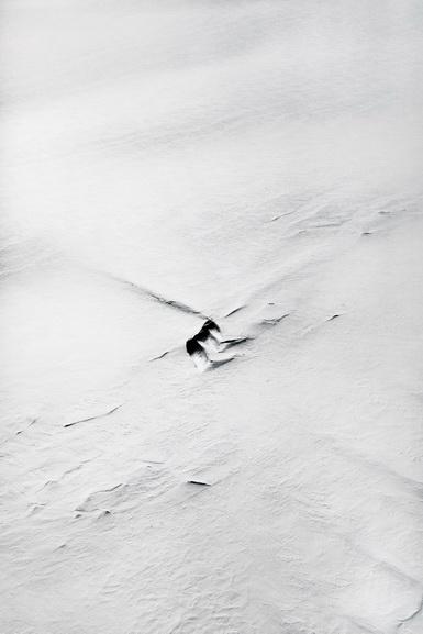 Paolo Pellegrin - NASA IceBridge