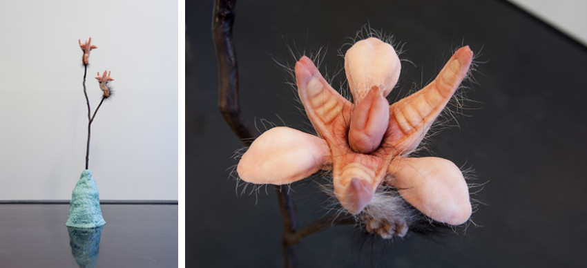 Patricia Piccinini latest exhibition includes video works