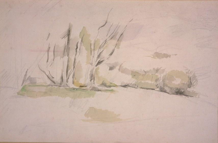 Paul Cézanne - Study of Trees, La Lisiere, c. 1895