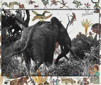 Peter Beard-Large Tusker (circa 150-160lbs) on the Athi-Tiva (sand river), Tsavo North-1965