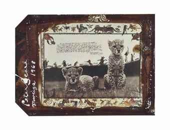 Peter Beard-Orphaned Cheetah Cubs, Mweiga, Kenya-1968