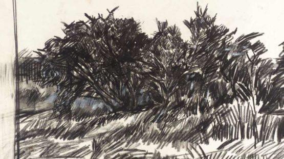 Peter Coker - Study for 'The Gorse Bush', 1957 - Image via tate