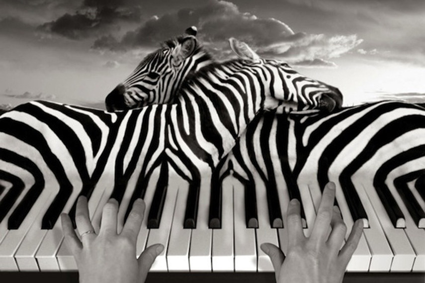 Thomas Barbey artwork