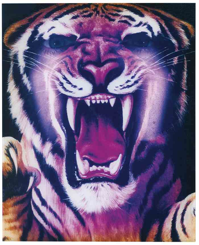 Piotr Uklanski-Untitled (Tiger Bursting)-1998