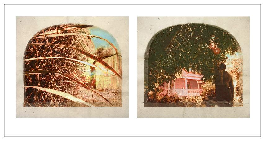 moffatt tracey 2013, 2000, 1999, 1994, and 1989 laudanum collection