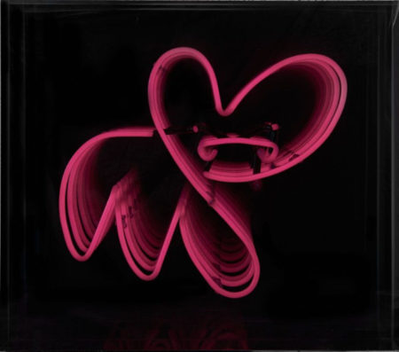 Pure Evil-Infinite Neon Pink Bunny-2013