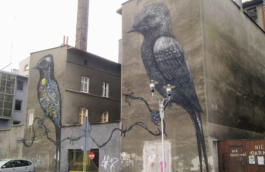 ROA - A piece in Katowice, Poland walls new - Image via wikimediaorg and festival people