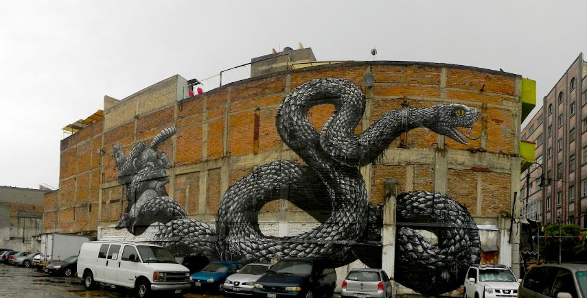 ROA - A piece in Mexico City walls contact new - Image via anjasthemeoftheweekcom