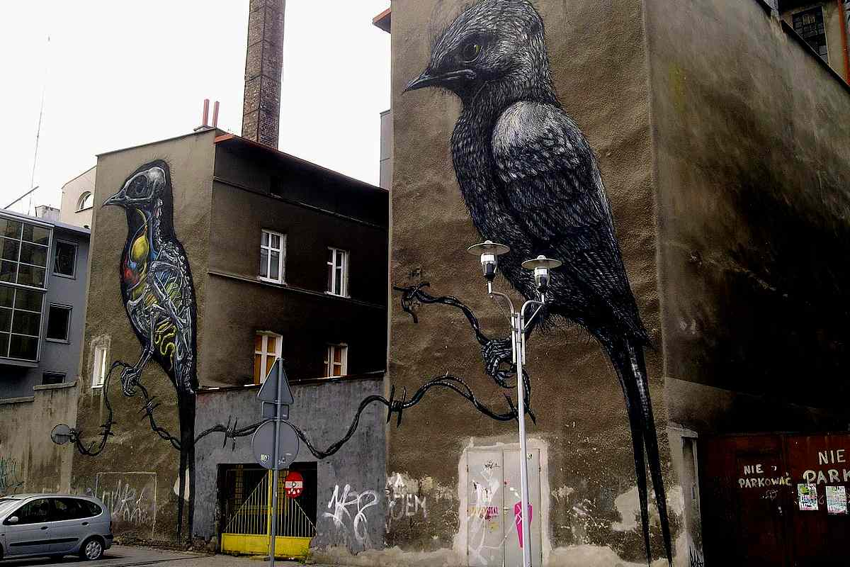 urban art murals birds