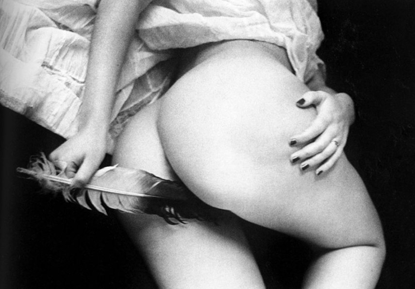 Ralph Gibson - Leda (Nude with Feather), 1974 terms use light page print terms use light page print