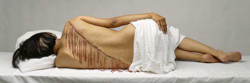 Rebecca Belmore (Anishinaabe), Fringe, 2007