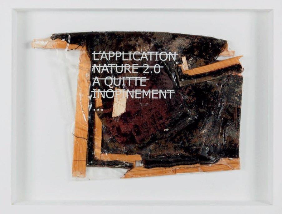 Rero-Sans Titre (L'Application Nature 2.0 A Quitté Inopéinément…)-2012