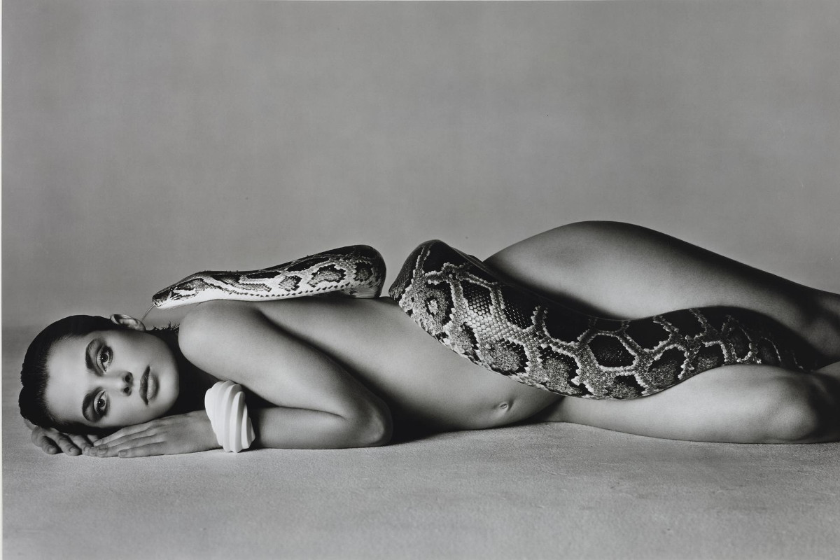 Richard Avedon - Nastassja Kinski And The Serpent, Los Angeles, California, 1981
