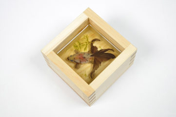 riusuke fukahori japan paint icn painted 2012 goldfish salvation video facebook dimensional