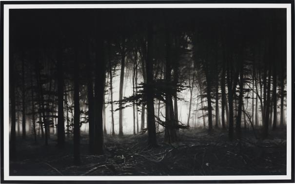 Robert Longo-Untitled (Forest of Doxa)-2014