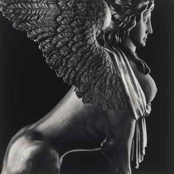 Robert Mapplethorpe-Sphinx-1988