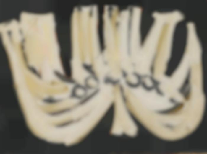 Robert Motherwell-Jewish Candelabra-1952