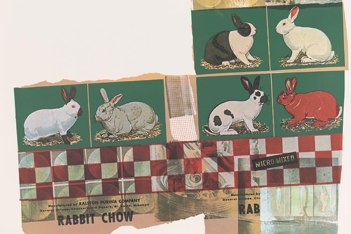Robert Rauschenberg - Chow Bags - Rabbit Chow (detail), 1977
