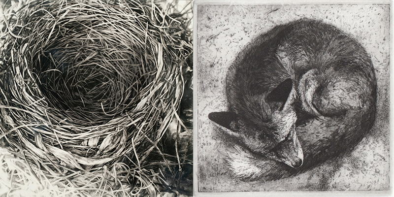 Robin Cole Smith - Instinct III, 2013 and  Fox, 2014, images courtesy of 1261 Gallery