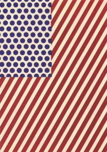 Roy Lichtenstein-America-2013