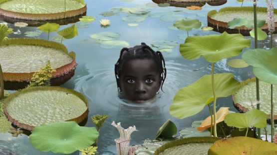 Ruud van Empel - World #7, 2005 (Detail) - Copyright Ruud van Empel